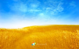 windows 95 wallpaper